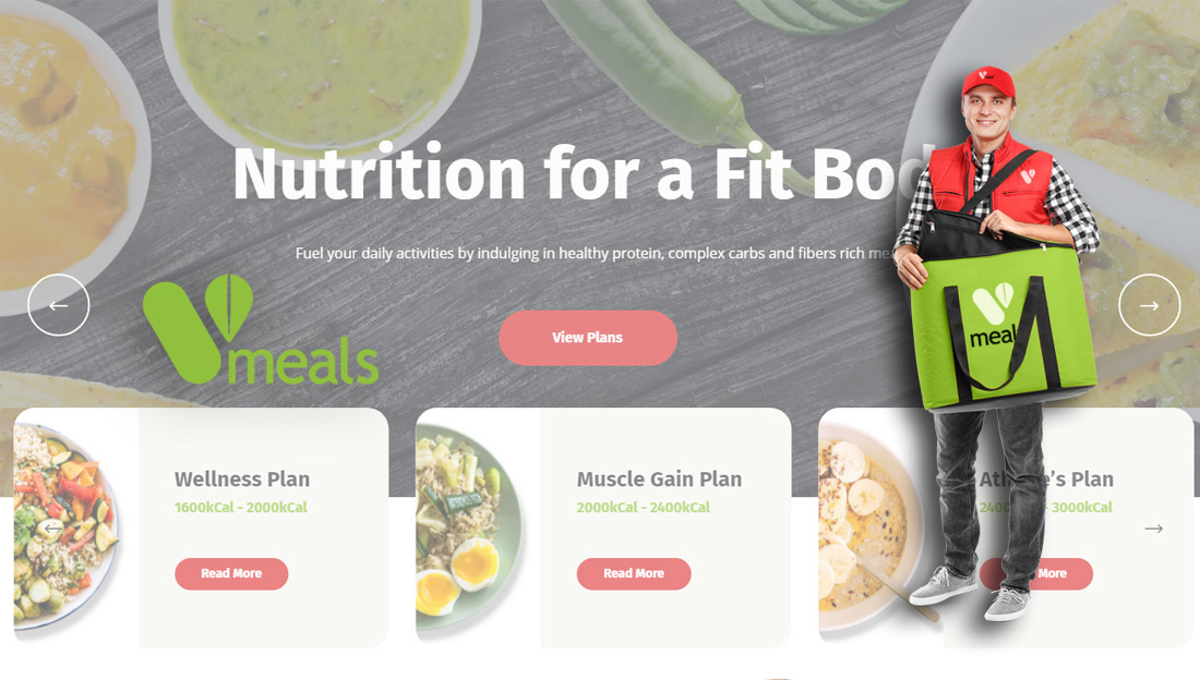 VMeals Healthy Meal Delivery in Dubai